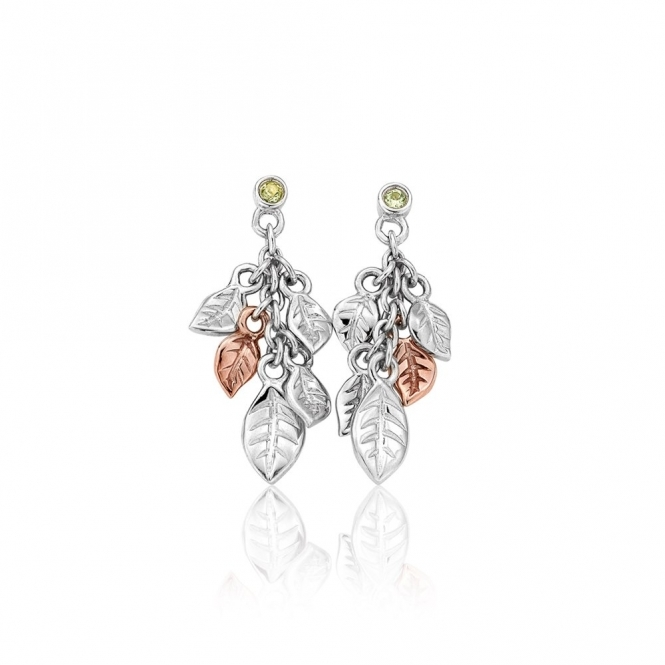 9ct Welsh Gold & Silver Awelon Earrings