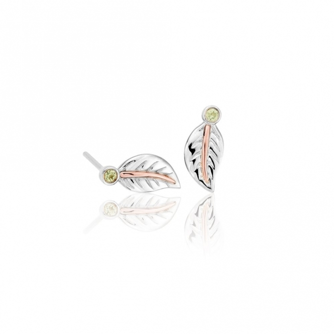 Awelon 9ct Welsh Gold & Silver Stud Earrings