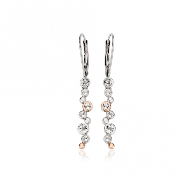 Celebration Drop Earrings