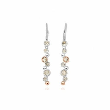 Silver Moments Drop Earrings