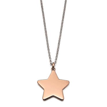 Sterling Silver Rose Gold Plated Tori Plain Large Star Pendant